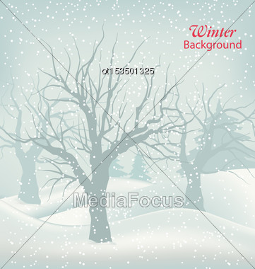 Illustration Winter Outdoor Background, Snowfall And Trees. Natural Landscape - Vector Stock Photo