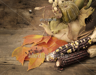 Indian Corn And Autumn Decoration On A Wooden Background Stock Photo