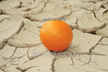Juicy Orange On Sunbaked Cracked Mud, conceptual of global warming. Stock Photo