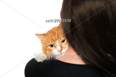 Kitten On The Shoulders Of Women. Stock Photo
