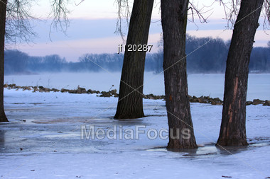 Landscape Of Trees And River In The Winter. Stock Photo
