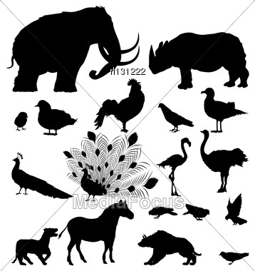 Large Silhouette Set Of Wild Animals And Birds Stock Photo