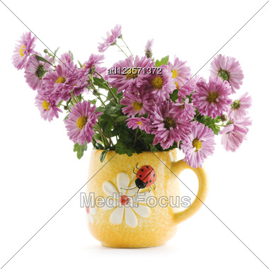 Lilac Chrysanthemum Flowers In Vase Stock Photo