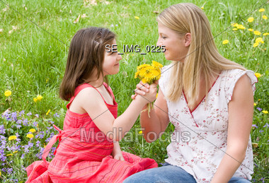 Little Girl Giving Flowers to her Mother Stock Photo