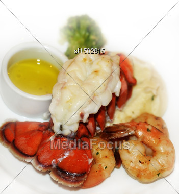 Lobster Tail And Shrimps With Mashed Potatoes Stock Photo