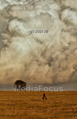 Man Goes To A Tree Standing Alone. In The Background Is A Huge Cloud Stock Photo