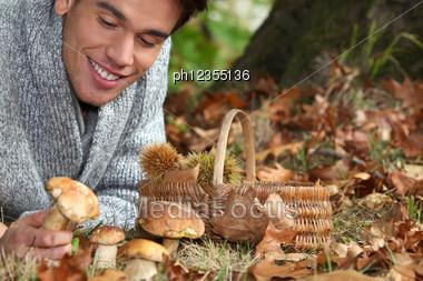 Man Lying On The Floor Picking Mushrooms Stock Photo