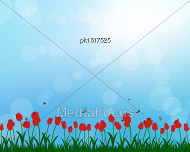 Meadow Color Background With And Sun. All Objects Are Separated. Vector Illustration With Transparency And Mesh. Eps 10 Stock Photo