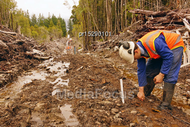 Men Placing Geophones In The Ground For A Seismic Reflective Survey On The West Coast Of New Zealand Stock Photo