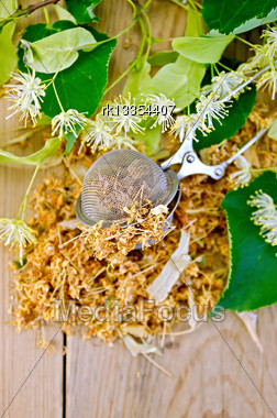 Metal Sieve With Dried Flowers Of Lime, Fresh Linden Flowers On A Wooden Board Stock Photo