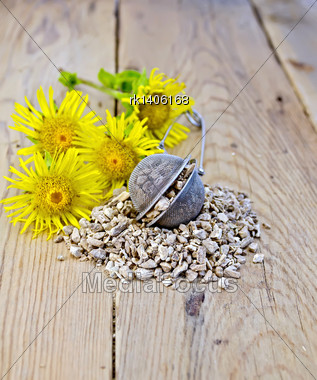Metal Sieve With Elecampane Root, Fresh Yellow Flowers Elecampane On Background Of Wooden Boards Stock Photo