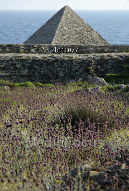 Methoni Castle At Sunny Summer Day, Purple Weed In Foreground, Blurred Sea In Background Stock Photo