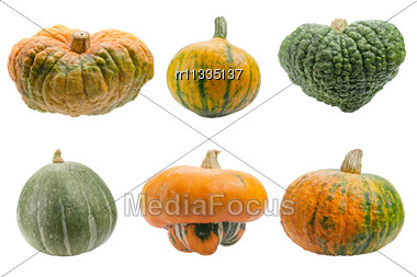 Miscellaneous Pumpkins Both Pumpkins Are Ecological And Natural Grew In Rural Garden Stock Photo