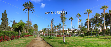 Montaza Park On Montaza Palace Area, In Alexandria, Egypt. Panorama Stock Photo