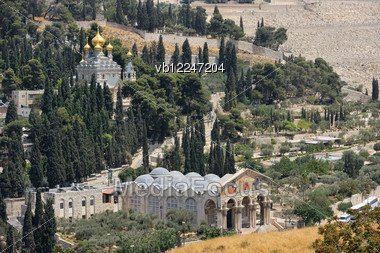Mount Of Olives, Church Of All Nations And Church Of Mary Magdalene, View From The Walls Of Jerusalem. Stock Photo