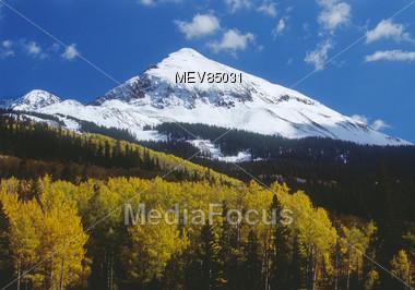 Mountain, Autumn Forest, Colorado, USA Stock Photo