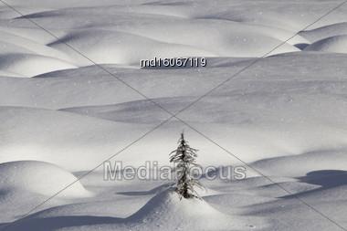 Mountain Snow Moguls Winter Alberta Canada Cold Stock Photo