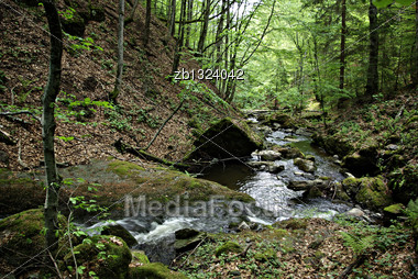 Mountain Stream Flowing Through Moss Covered Rocks In The Forest Stock Photo