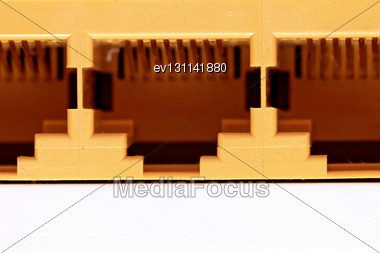 Network Connection Socket, RJ-45. Macro. Isolated Stock Photo