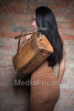 Nice Young Brunette Posing With Reptile Handbag Stock Photo
