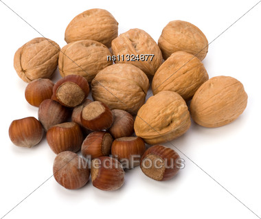 Nuts Isolated On White Background Stock Photo