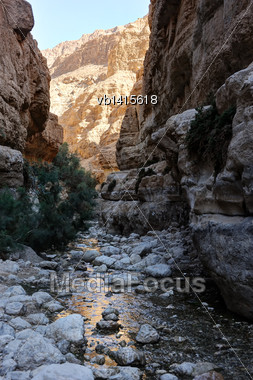 Oasis In The Desert, Ein Gedi Nature Reserve On The Shore Of The Dead Sea Stock Photo