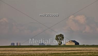 Old Barn And Tree With Regina Saskatchewan In Background Stock Photo