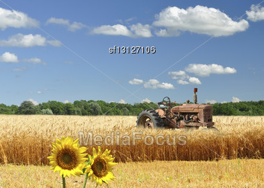 Old Broken Tractor On A Wheat Field Stock Photo