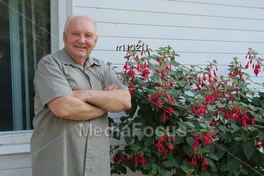 Old Man - Grower Of Flowers Next To Flower Bush In Summer Day Stock Photo