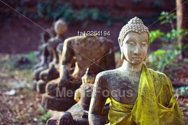 buddhist singles in standard • what is buddhism buddhism is a religion to about 300 million people around the world the word comes from 'budhi', 'to awaken.