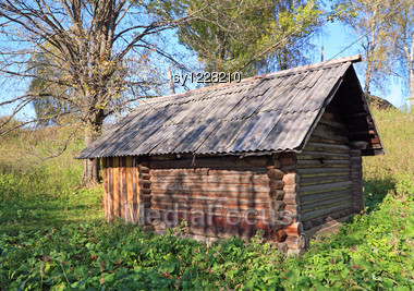 Old Rural House Amongst Tree Stock Photo