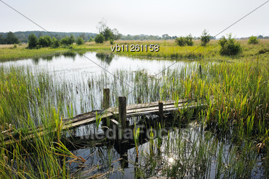 Old Wooden Bridge Over A Flooded Stream In The Spring Stock Photo