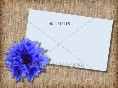 One Blue Flower With Message-card On Textile Background. Close-up. Studio Photography Stock Photo
