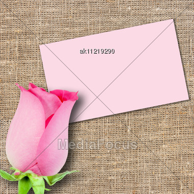 One Pink Rose And Message-card On Textile Background. Close-up. Studio Photography Stock Photo