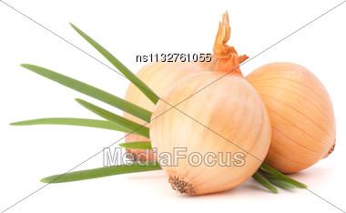 Onion Vegetable Still Life On White Background Cutout Stock Photo