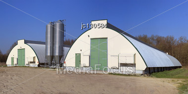Panoramic Photo Of A Barn With Grain Silos For Breeding Hens And Chickens Stock Photo