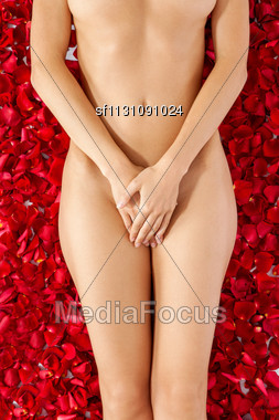 Part Of The Naked Beautiful Suntanned Female Body In Petals Of Scarlet Roses Stock Photo