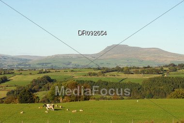 PEN-Y-GENT HILL FROM BOWLAND Stock Photo