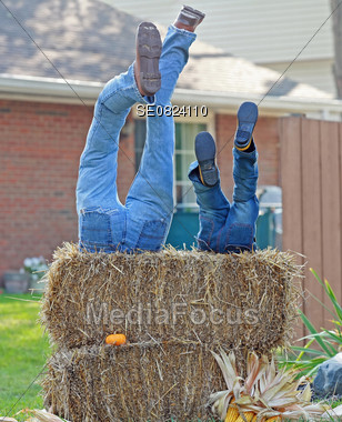 People Having Fun Stock Photo