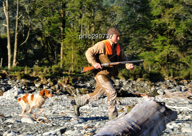 Pheasant Hunter And Dog Run After A Shot Bird On The West Coast, South Island, New Zealand Stock Photo