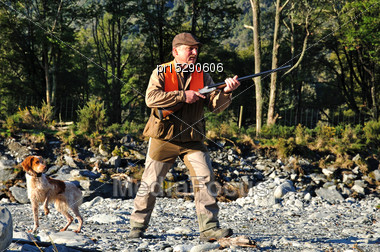 Pheasant Hunter And Dog Watch A Bird Go Down On The West Coast, South Island, New Zealand Stock Photo
