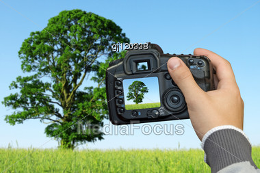 Photographer Photographing Landscape With Digital Photo Camera Stock Photo