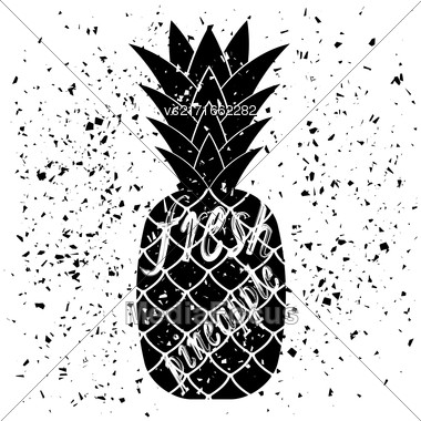 Pineapple Icon Typography Design On White Grunge Background. Vintage Fruit Poster, Banner, Logo Or Label With Lettering Stock Photo