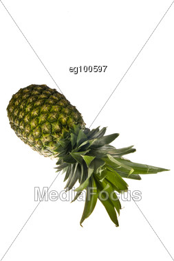 A Pineapple Stock Photo