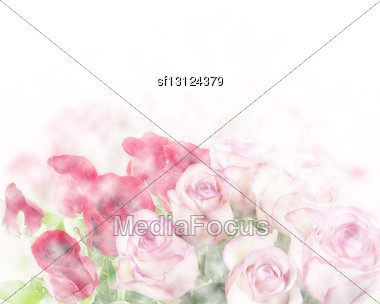 Pink And Red Roses Abstract Background Stock Photo