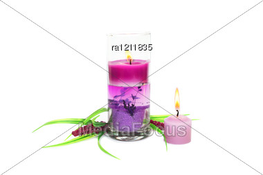 Pink Burning Candles And Plant Stock Photo