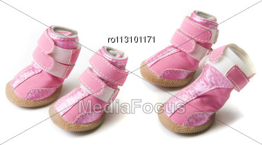 Pink Dogs Boots Isolated Stock Photo