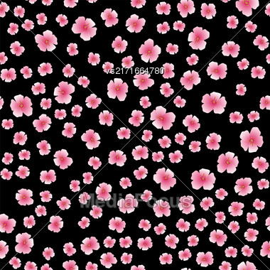 Pink Flower Seamless Pattern Isolated On Black Background Stock Photo