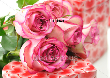 Pink Roses And Gift Boxes Stock Photo