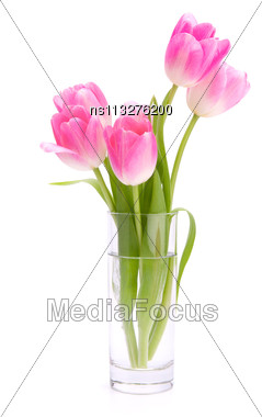 Pink Tulips Bouquet In Vase Isolated On White Background Stock Photo